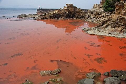 Австралия: кровавая вода
